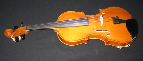 My new violin